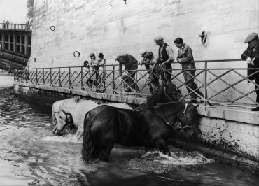 Dans les flots rafraîchissants de la Seine, 1929