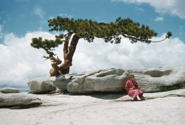 Yosemite, 1968