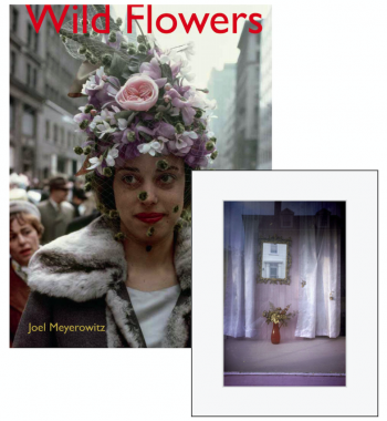 Wild Flowers (edition collector)