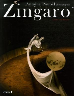 Zingaro (Edition collector avec tirage)