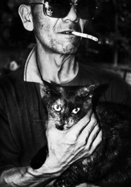 Poster Cat Man