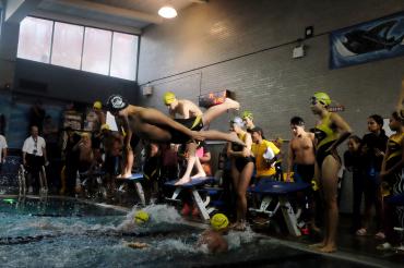 Swim Meet, 2017