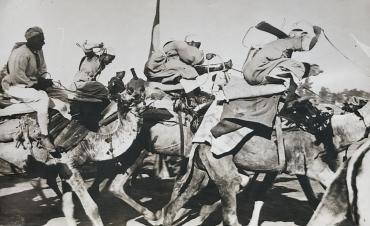 Des bédouins du désert disputent une course...devant la caméra