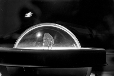 Pierre de lune, 1969