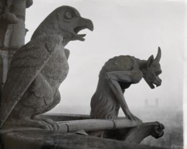 Un aigle et un diable