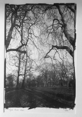 Hyde Park London I, 2001