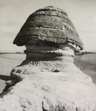 Le crâne du Sphinx de Gizeh