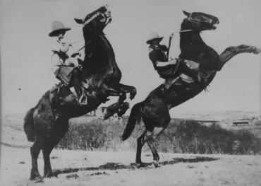 Le dressage des chevaux, Canada