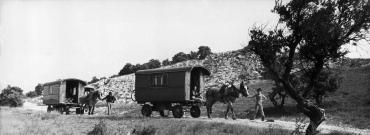 Vacances en roulotte, 1973