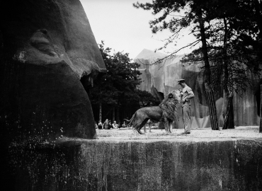 Un lion et son gardien au zoo de Vincennes, Paris, 1934